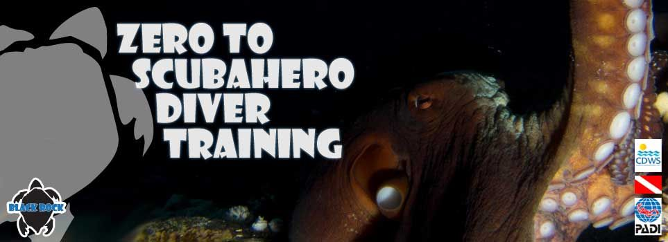 Zero to Subahero Diver Training
